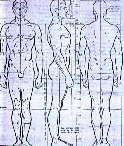 dibujar el cuerpo humano: