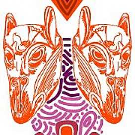 Cayab Arte Diseño